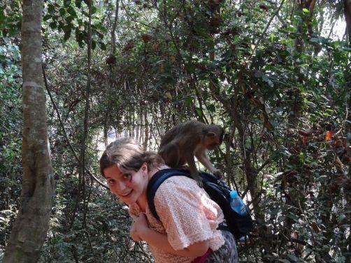 Rencontre impromptue avec un singe au Cambodge ! ;)