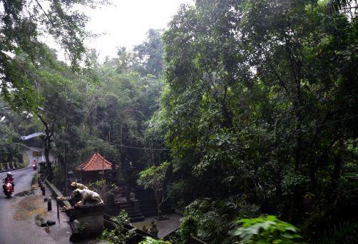 indonesie-bali-2016 (110)