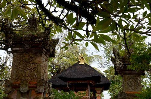 indonesie-bali-2016 (139)