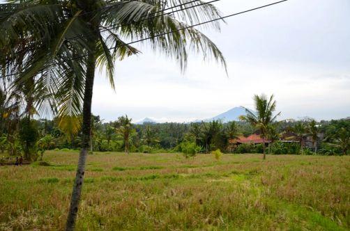 indonesie-bali-2016 (193)