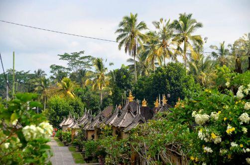 indonesie-bali-2016 (274)