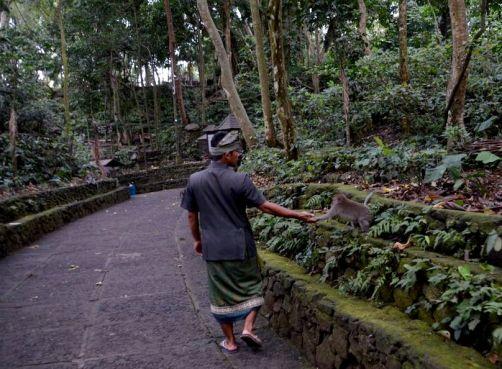 indonesie-bali-2016 (351)
