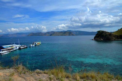 indonesie-komodo-flores-ile (232)