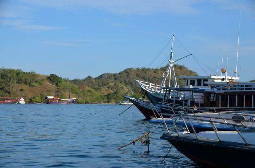 indonesie-komodo-flores-ile (61)