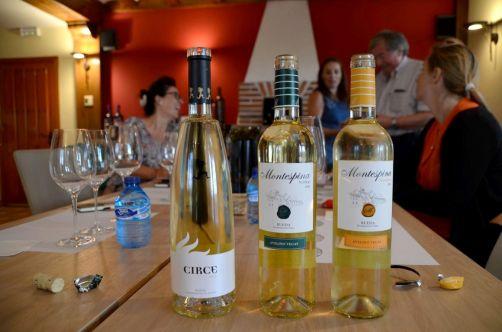 route-vins-rueda-espagne-115