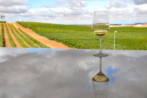 route-vins-rueda-espagne-272