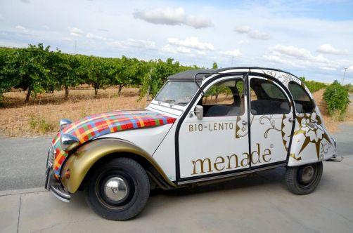 route-vins-rueda-espagne-323