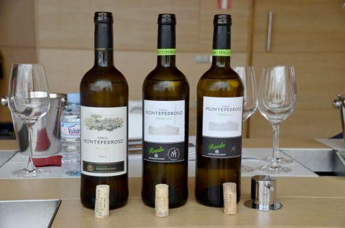 route-vins-rueda-espagne-378