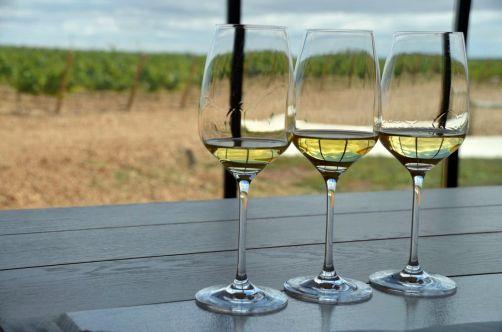 route-vins-rueda-espagne-379