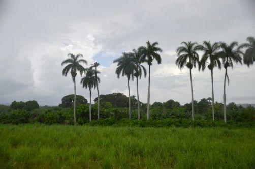 trinidad-cuba-546