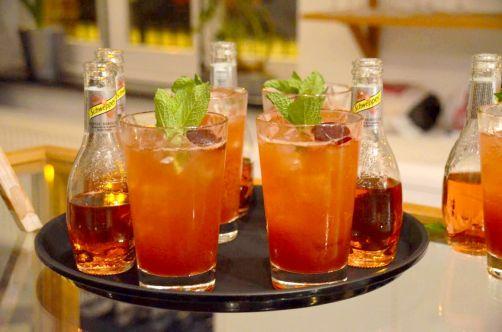 gin-pairing-3