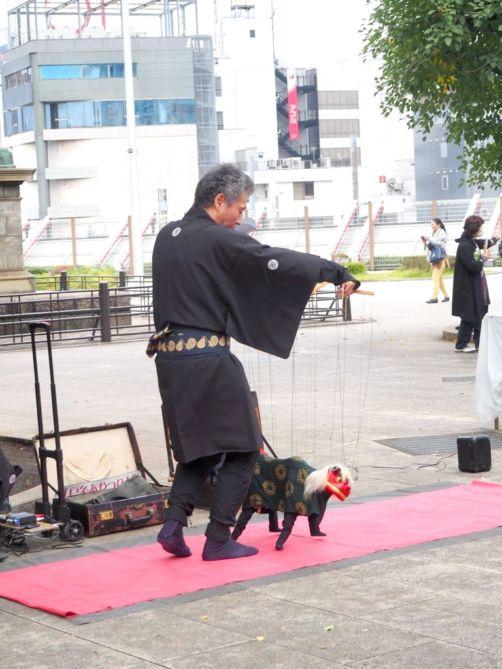 Japonais Gaijin datant